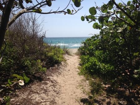 Ocean Strand Beach View