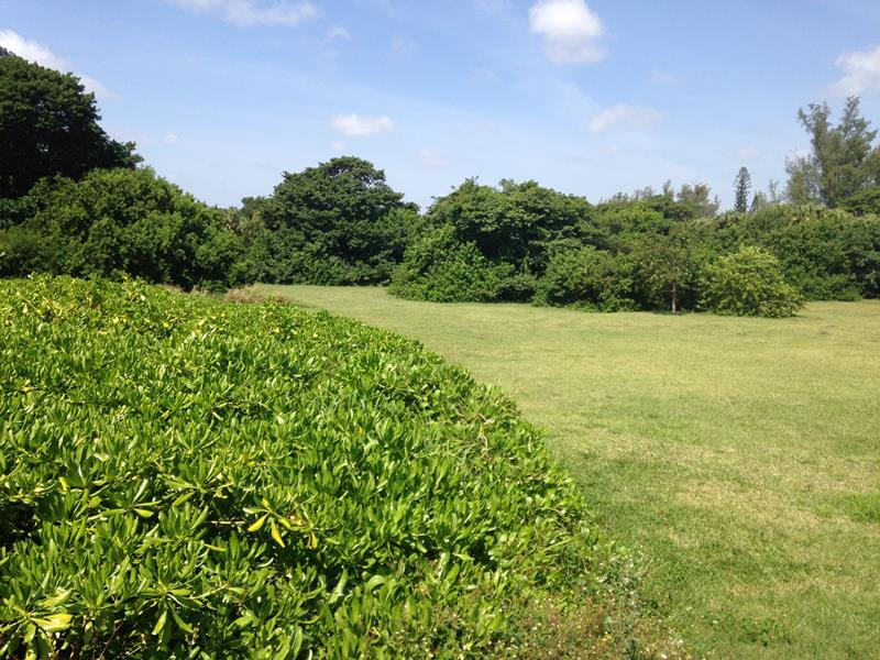 Ocean Strand Undeveloped Park Property
